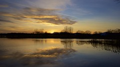 gold & blue (Caropaulus) Tags: blue sunset sky sun water gold evening soleil flood bleu ciel alsace inondation flooded ried crues
