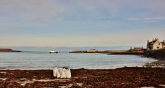 Voar Work  IMG_7164 (Ronnierob) Tags: tang shetlandisles goodshepherdiv grutnessbeach