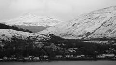 Lomond Looking Over (J @BRX) Tags: winter blackandwhite bw mountain snow tree rock landscape scotland nationalpark benlomond arrochar lochlong argyllandbute lochlomondtrossachs