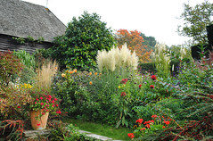 Autumn at Great Dixter - Explored (Mark Wordy) Tags: flowers autumn plants gardens barn grasses eastsussex pampasgrass christopherlloyd greatdixter