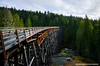 Kinsol Train Trestle (Witty nickname) Tags: trestle bridge trees green wet rain clouds forest train lens landscape nikon bc bend outdoor wideangle columbia valley flare british nikkor curved f28 d800 cowichan kinsoltrestle koksilahriver cowichanvalley kinsol 1424mm nikkor1424mmf28