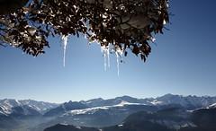 Soum des Aiguillous (georges.loustale) Tags: france montagne soleil altitude hiver neige arbre pyrénées glaçon sommet aquitaine béarn diamants