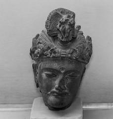 0W6A3937 (Liaqat Ali Vance) Tags: pakistan heritage statue museum photography google buddha archive buddhism ali civilization punjab lahore vance gandhara liaqat