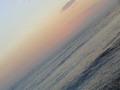 pimentel - chiclayo - peru (diazeg) Tags: sunset sol mar aves arena cielo