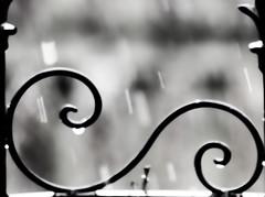Zaun (albularider) Tags: zaun ostrach