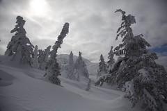 Winter Wonderland (jukerr) Tags: canada britishcolumbia bigwhite bigwhiteskiresort