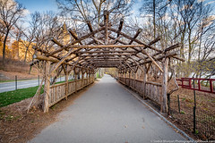 Wooden Tunnel (Sodrul Bhuiyan) Tags: beautifullight structure centralparkwest