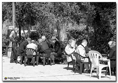 20080319_1255 (gabrielpsarras) Tags: park people bw tree men public sunshine reading book blackwhite chair downtown chess athens company greece zappeion  zappeio
