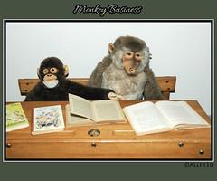 Monkey see, monkey do (allfr3d) Tags: toys reading monkey nikon doll dolls belgium belgique d70s belgi books autofocus photoborder allfr3d