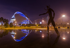 El Guardin (Jos Ferrando) Tags: valencia noche calatrava cac reinasofia ciudaddelasciencias reflejos largaexposicin canon1740mml canon6d