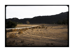 Once Upon a Winter Field (AnotherCalifornia) Tags: california ranch winter field landscape outdoors southerncalifornia tumbleweed