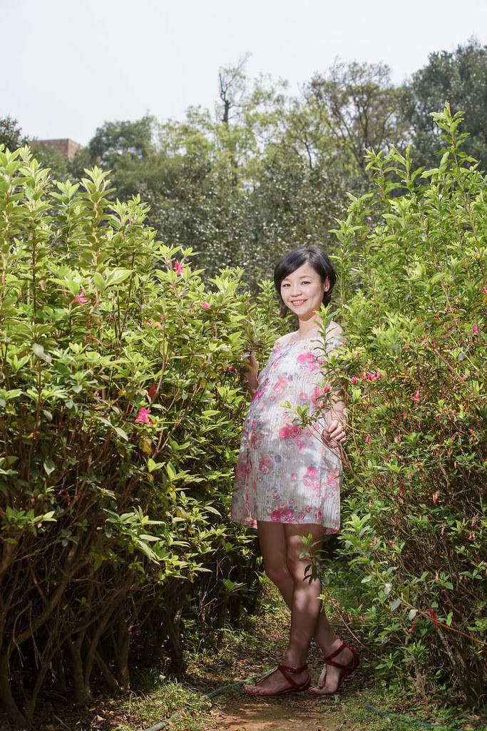 擎天崗,花卉試驗中心,孕婦寫真,孕婦攝影,擎天崗孕婦,花卉試驗中心孕婦,陽明山孕婦,Erin108