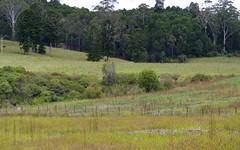 Lot 5 Cavanagh Road, Lowanna NSW