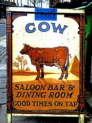 Cow (Draopsnai) Tags: cow pubsign kensingtonandchelsea westbourneparkroad camelcigarettepacket