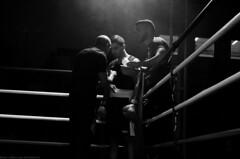 SUJET | Boxe (Camille.r_photographer) Tags: france sport photo coin model nikon photographie noiretblanc nb ring lemans boxe reportage lumire arrt antares boxeur d5100 camillerphotographer punchlivefightnight ozatasamet