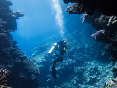 IMG_0477 (eye[4]eye) Tags: egypt diving gypten tauchen bluewaves