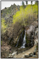 Flowing Down The Hillside (Dave Heise) Tags: city trees green carson waterfall nevada canyon kings
