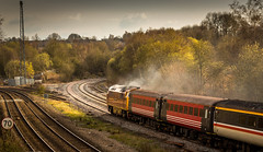 """Class 52 """"Western"""" no D1015 """"Western Champion"""" at Clay Cross (Tupton) on 10-04-2016 with the return leg of the """"Maybach Yorky"""" Charter from York to Derby (kevaruka) Tags: bridge england sun color colour heritage history colors sunshine station yellow composition train canon eos flickr day colours tour diesel outdoor derbyshire traction rail railway sunny trains front class historic retro telephoto page western april 5d british locomotive network yorky chesterfield charter 52 hydraulic maybach the 400mm mk3 2016 d1015 tapton ef100400 f4556l 5d3 5diii thephotographyblog 10042016"""