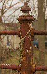 Fence (rumimume) Tags: old red ontario canada canon fence photo still rust sigma niagara chipped picoftheday 2016 550d peelingmetal t2i rumimume