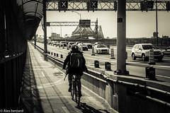 Quand 2 roues valent mieux que 4 (alex.bernard) Tags: canada bike bicycle canon traffic montréal québec biking tamron bicyclette trafficjam vélo pontjacquescartier jacquescartierbridge tamron2470 canon5diii bouchondecirculation