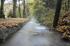 steam Flickr (Jules Marco) Tags: wood nature water canon wasser natur krnten carinthia steam bach wald maibachl villachwarmbad eos600d tamron18270mmf3563diiivcpzd