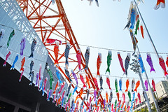 Carp Streamer with Tokyo Tower 2 (wakamsha) Tags: sigma tokyotower dp0q