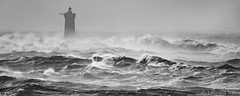 _4LN3098 : Four solitaire (Brestitude) Tags: mer lighthouse storm france brittany wave bretagne breizh phare tempête argenton lefour iroise brestitude ©nevolaurent2016