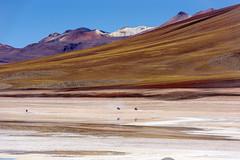 Caminos Bolivianos (Ricardo Martinez Fotografia) Tags: america landscape nikon desert bolivia paisaje desierto altiplano uyuni potosi d810
