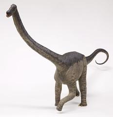 Rapetosaurus Baby (lebovox) Tags: saintpaul dinosaurs sciencemuseum smm sciencemuseumofminnesota rapetosaurus lebovox lebovoxphotography babyrapetosaurus