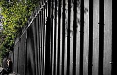 Fence of Paradise ~ Notre Dame de Paris ~ MjYj (MjYj) Tags: world life street city light sunset urban woman motion paris sexy art texture love beauty fashion night contrast fence dark entropy soleil couple pretty solitude paradise noir photographer time femme creative documentary dancer event cover amour promenade record romantic eden feeling temps reflets chronicles ville slices homme enigmatic tendre passant encounters espoir freelancers mjyj urbanchronicles mjyj quietdaysinparis p4160181
