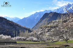Nagar valley, upper Hunza, Pakistan (Furqan LW) Tags: pakistan nature valley northern hunza nagar gilgit furqan furqanlw