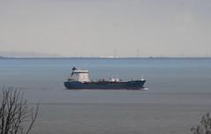Bro Deliverer outbound. (aitch tee) Tags: sailing ship shipping oiltanker bristolchannel brodeliverer