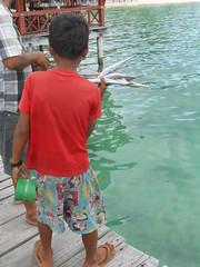 au village de Sok San, Koh Rong (Vincentello) Tags: garçon boy poissons fish soksan kohrong cambodge cambodia