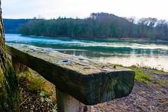 Lieblingsplatz am Rhein