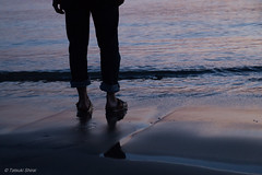 Stop to breach at beach /  (Tatsuki Shirai) Tags: sunset sea feet beach standing legs stop shore memory
