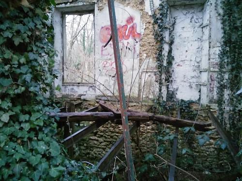 bois Livry-sur-Seine-008