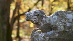 Lion at the gate (Elisafox22) Tags: old autumn trees macro sunshine stone gardens lens scotland colours shadows aberdeenshire bokeh sony lion textures worn weathered kennethmont 100mmf28 leithhall slta58 elisafox22 elisaliddell2016