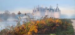 L'automne  Chambord, suite et fin. (kalzennyg) Tags: france castle chambord loire chteau renaissance blois brumes kalzennyg