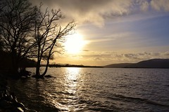 Balmaha (Michelle O'Connell Photography) Tags: winter silhouette scotland seasonal lochlomond wintersun balmaha michelleoconnellphotography treesmwintersky