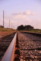On Track (natasha.kachine) Tags: railroad bokeh powerlines railroadtracks