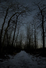 Elk Island Vertical Panorama (Canning87) Tags: travel trees canada cars canon stars island astrophotography alberta elk wilderness