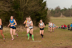 DSC_5826 (Adrian Royle) Tags: people field grass sport outdoors athletics nikon mud action leicestershire country running racing hills crosscountry runners athletes xc saucony castledonington ecca doningtonpark englishnationalcrosscountry2016