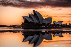 Sunrise Over Sydney Opera House (Ashley I Hayes) Tags: reflection sunrise au sydney australia newsouthwales therocks operahouse