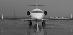 On the nose (Hammerhead27) Tags: england bw white mist black tarmac plane nose mono airport ramp aircraft aviation wing engine ground olympus executive damp airfield fuselage em1