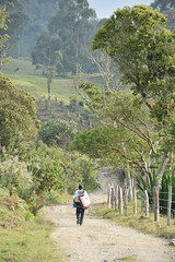 (hernandodazarodrguez) Tags: naturaleza nikon colombia colores fotografia suramerica lbano d5300