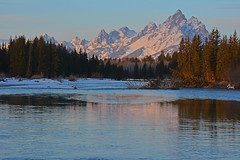 Snake River Sunrise in the Tetons - 9955b+ (teagden) Tags: morning winter mountain snow cold nature sunrise river landscape nikon snake earlymorning scenic grand snakeriver wyoming grandtetons teton tetons grandteton naturephotography grandtetonnationalpark coldmorning landscapephotography earlymorninglight tetonmountains gtnp jenniferhall jenhall jenhallphotography jenhallwildlifephotography