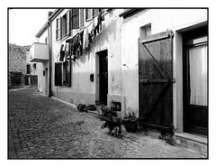 Glimpses of Sardinia n. 11 (Franco & Lia) Tags: sardegna blackandwhite sardinia noiretblanc tokina1224 biancoenero martis glimpsesofsardinia