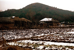 31-637 (ndpa / s. lundeen, archivist) Tags: houses homes winter house snow color building fall film home field architecture rural 35mm buildings farm nick hill korea korean seoul thatchedroof 1970s southkorea 1972 31 dewolf thatchroof nickdewolf photographbynickdewolf reel31