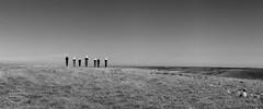 Fringe Festival 2016 (Paula McManus) Tags: sculpture art arts fringe olympus artists adelaide southaustralia sculptures fringefestival adelaidehills paulamcmanus olympusomd palmersculpturebiennial fringefestival2016