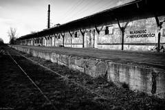 End of the Line (michael.mu) Tags: leica railroad blackandwhite bw abandoned train 35mm platform poland polska rail warsaw warszawa m240 leicasummicron35mmf20asph silverefexpro leicasummicronm1235mmasph warsawrailwaymuseum muzeumkolejnictwawwarszawie